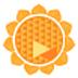 向日葵客户端 V9.8.0.12