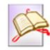 eFlip Standard(翻页书