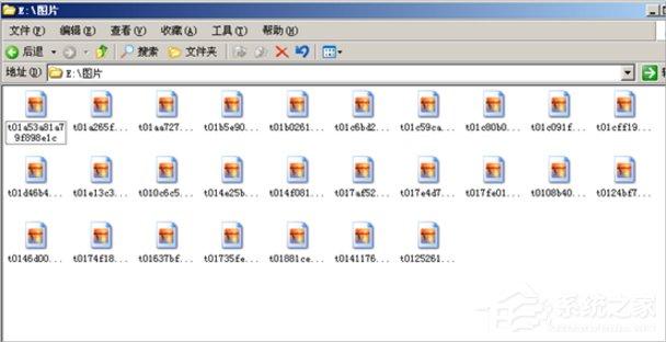 WinXP缩略图不显示文件名怎么办?