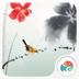 荷叶飞鸟-梦象动态壁纸 v1.2.8